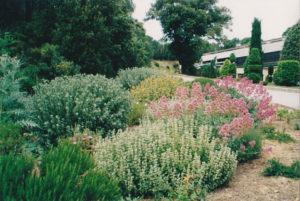 giardino bonus