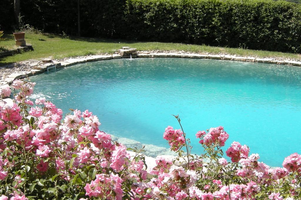 Biopiscina, piscina al sale, piscina naturale, bio piscina